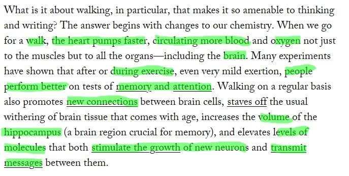 Trích bài báo Why Walking Helps Us Think?
